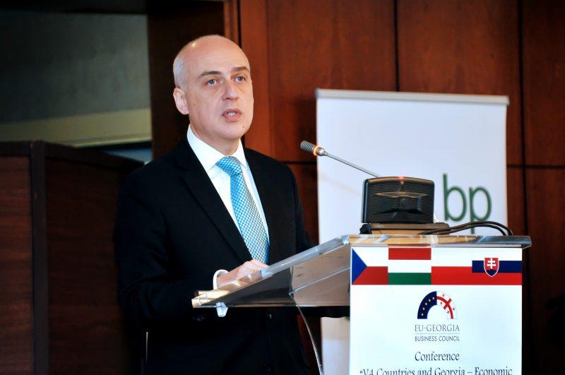 First Deputy Minister of Foreign Affairs of Georgia, Davit Zalkaliani
